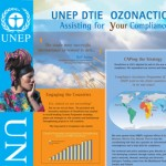 OZONACTION-PANEL UNEP